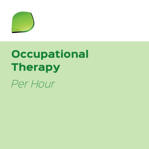 Oasis OT | Occupational Therapy (Per Hour)